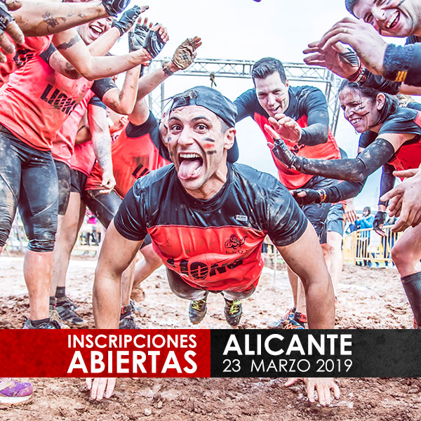 Survivor Alicante